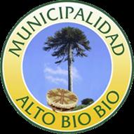 Municipalidad de Alto Biobío